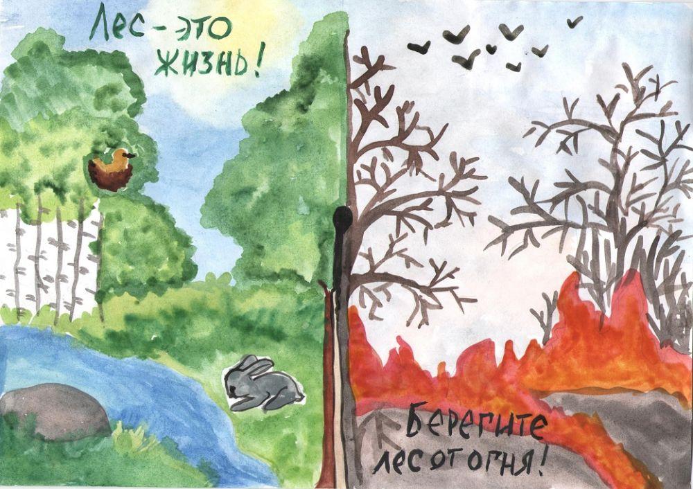 хламидии картинки как защитить лес от огня охраняет тебя