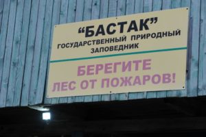 В заповеднике «Бастак» продолжается электрификация кордонов