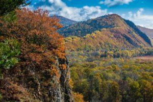 Национальному парку «Бикин» сегодня исполняется пять лет