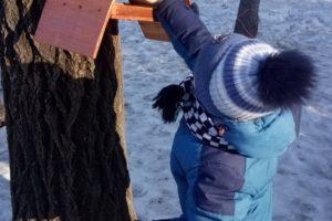 Старт эколого-просветительской акции «Покормите птиц зимой!»