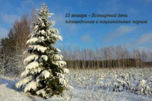 11 января — День заповедников и национальных парков