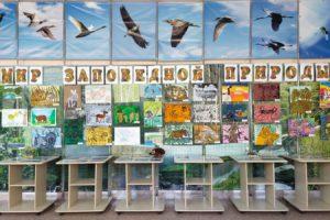 Выставка «Мир заповедной природы»